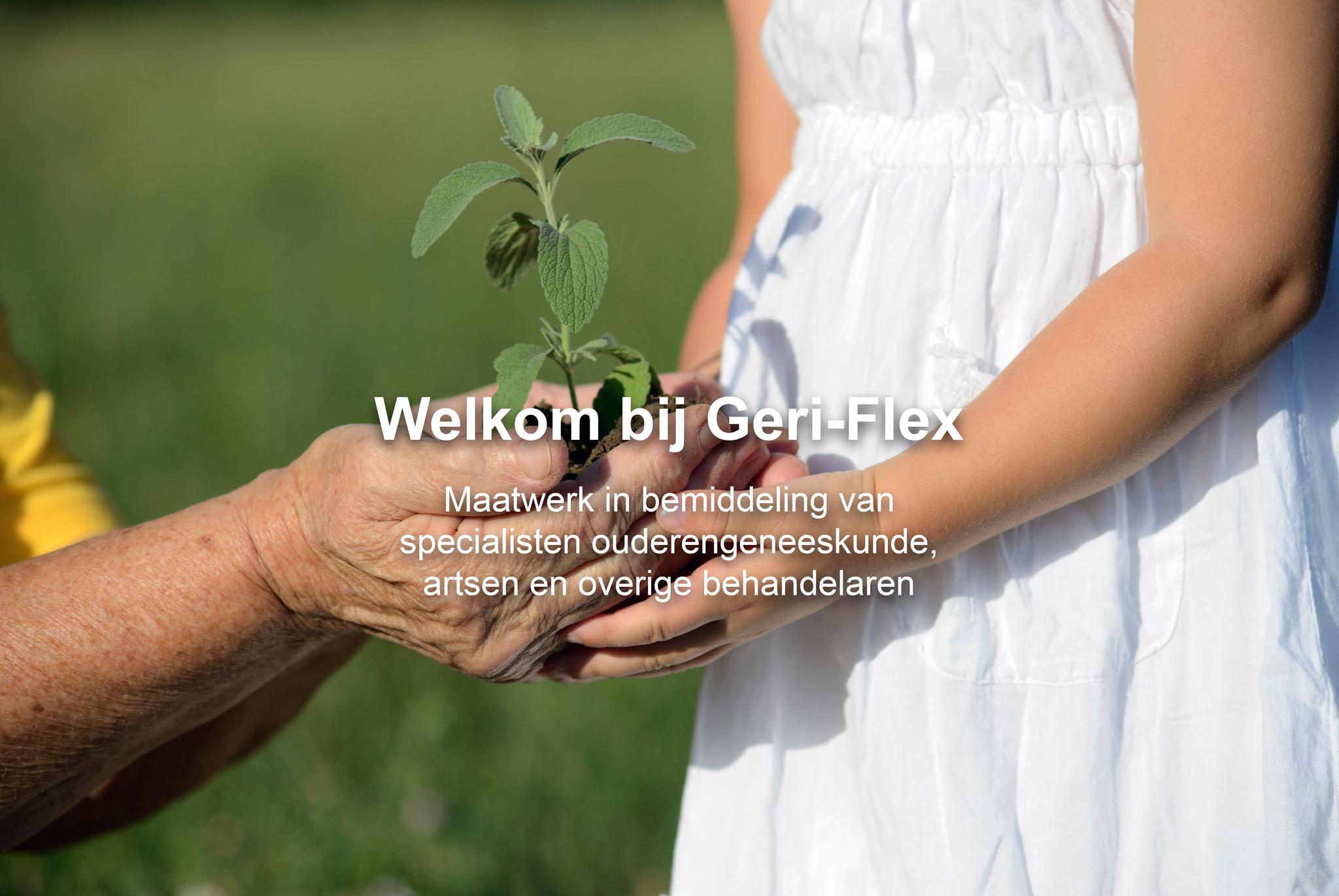 Geri-Flex_Slide01