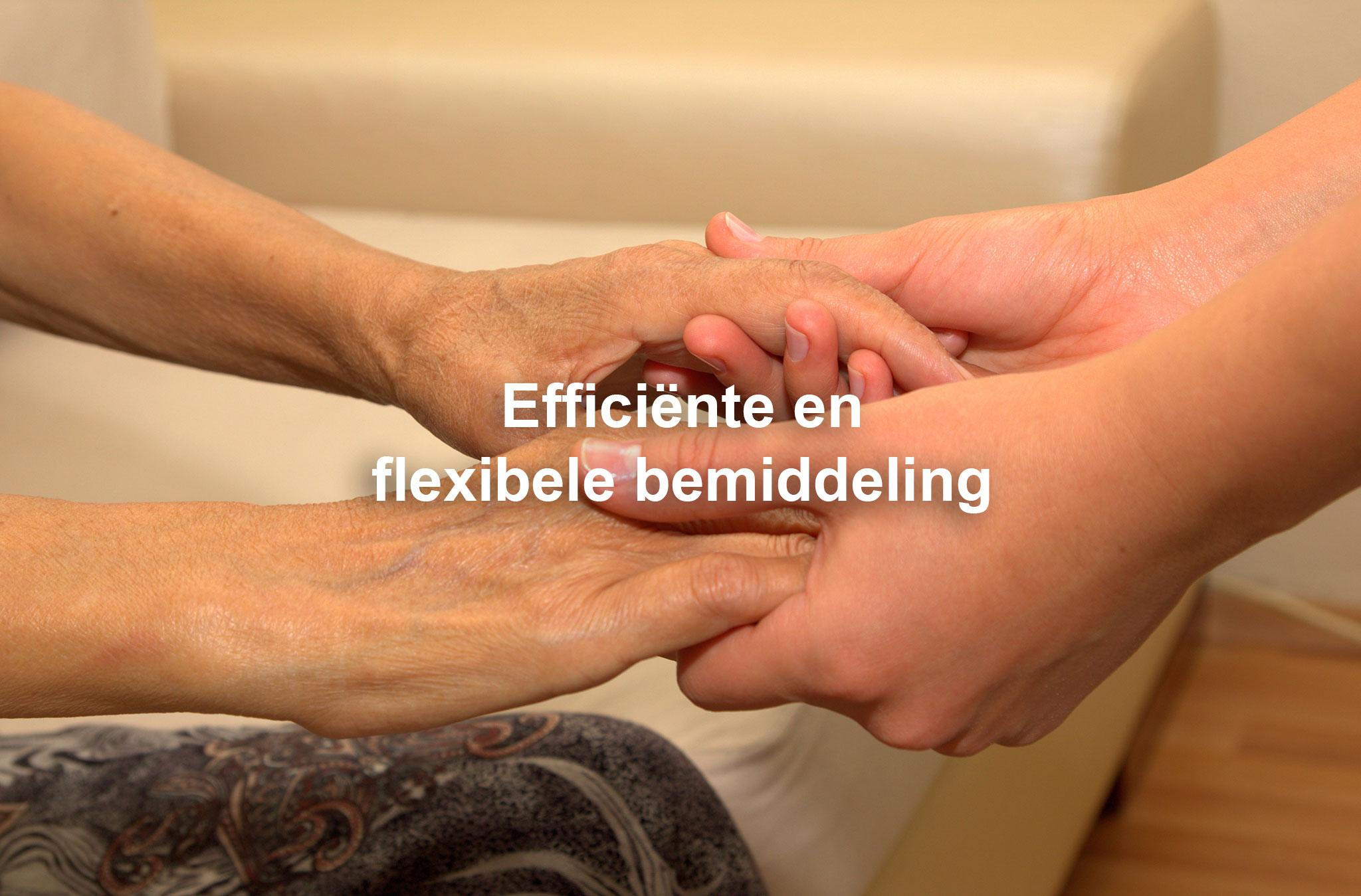 GeriFlex_Slide02